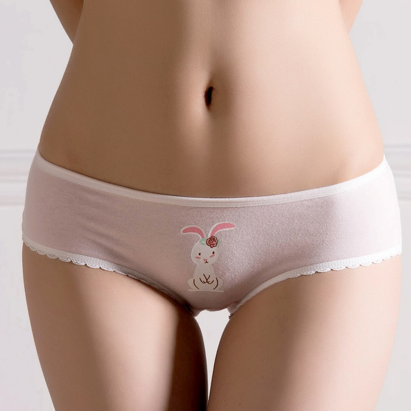 Young Girl's Underwear 6pc Cotton Candy Low Waist Teenage Girl Briefs  Girls Panties Infantil Clothes  Rabbit Style  L