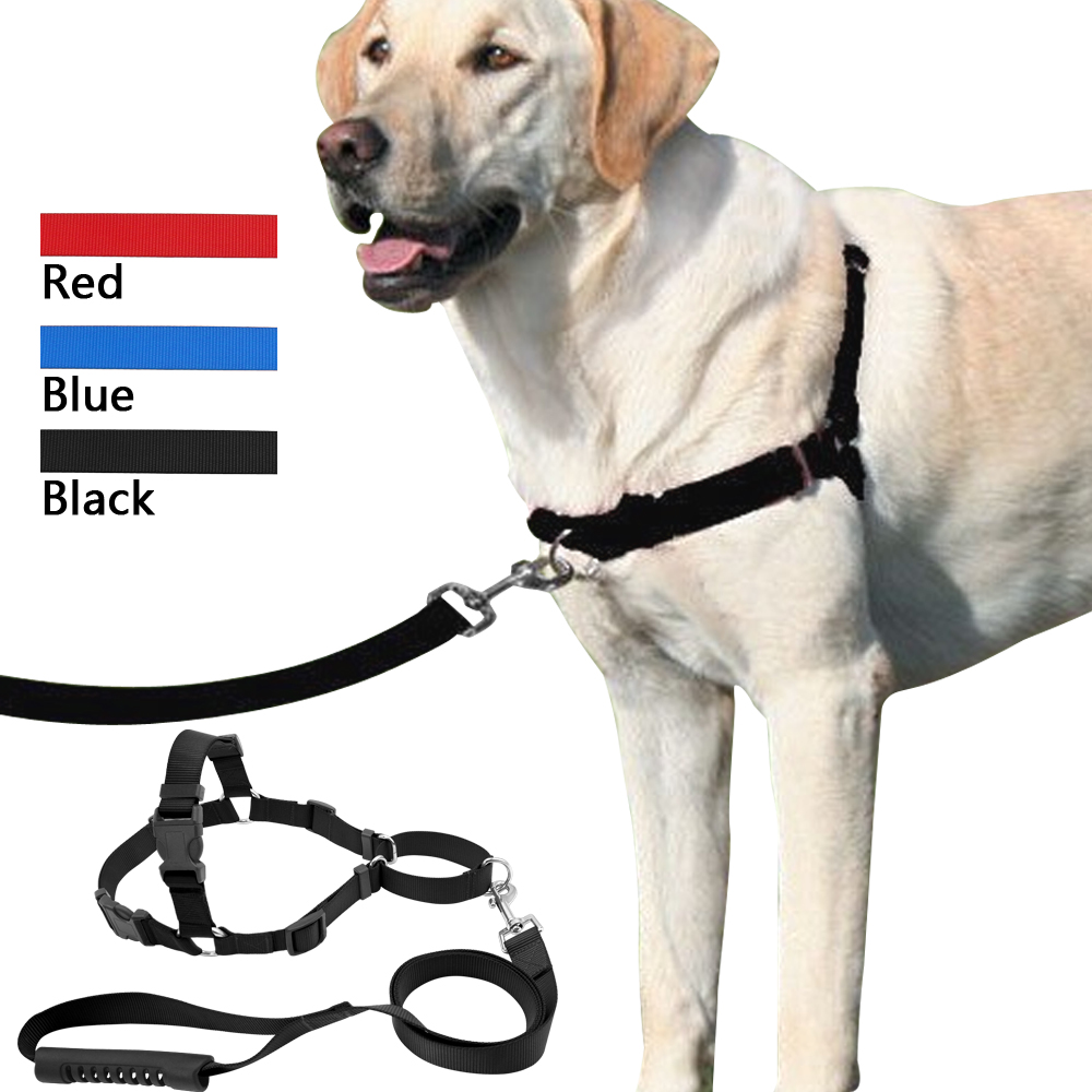 Pet No Pull Nylon Dog Harness With Leash Training Front