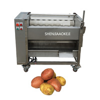ZH QP800S Automatic Ginger Washing And Peeling Machine Ginger Roller Peeling Machine Sweet Potato Cleaning Peeling