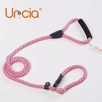Uncia 12mm Diameter Stripled Pink Large Dog Collar And Leash Set Soft Sponge Handle Brighten