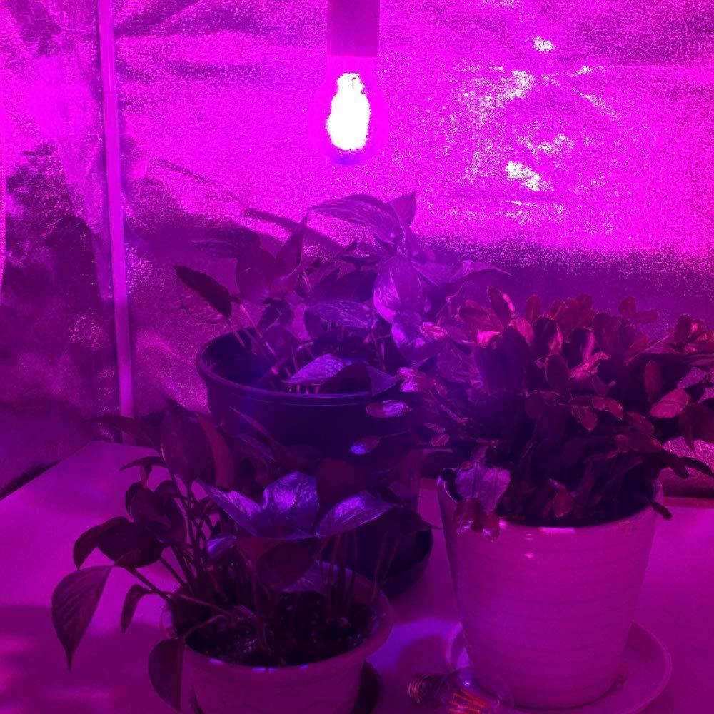LED Grow Light Bulb 4