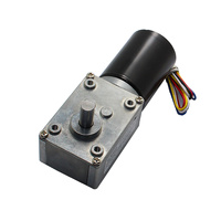 Reducer Motor DC 24V Rated Speed 30RPM Rated Torque 30.0 Kg.cm Brushless Worm Geared Reducer Motor GM4058 BLDC3650