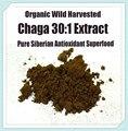 Siberian Chaga Mushroom 30:1 Extract Powder 250g - Organic Polyose Extract