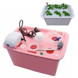 6 buracos planta local sistema hidropônico interior caixa de armário jardim crescer kit bolha jardim potes plantador berçário pote 220 v/110 v 1 conjunto