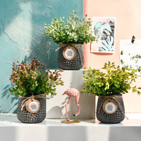 Nordic Pastoral Desktop Simulation Multi color Small Potted Bonsai Ornaments Shop Decoration Potted Plants