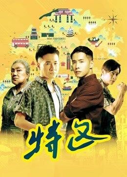 《特区》2019年中国大陆剧情电影在线观看