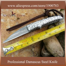 DS065 Mini Damascus Steel Blade 3CR14MOV S/S handle Folding Outdoor Pocket Knife Camping Knife couteaux pliants haut de gamme