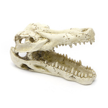 1PC Resin Artificial Decor Ornament Crocodile Skull Aquarium Decorations Tank Fish Background Akvaryum Dekor