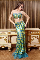 Sequin Adult Little Mermaid Costumes Party Fancy Dress Mermaid Tail Dress