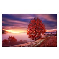 Large Landscape Canvas Art Sunrise Red Tree Forest Picture Prints Sea Clouds Nature Scenery Wall Art Painting Home Decor for Liv