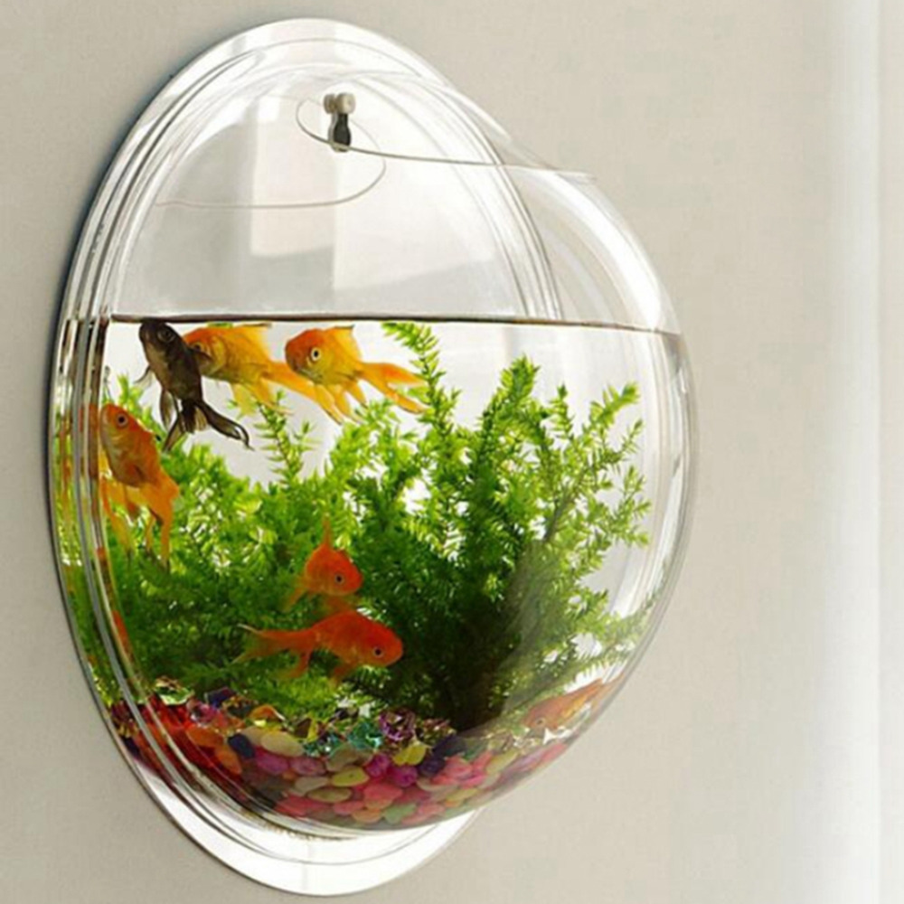 Hot Sale Dropshipping Acrylic Round Fish Bowls Wall Mounted Hanging
