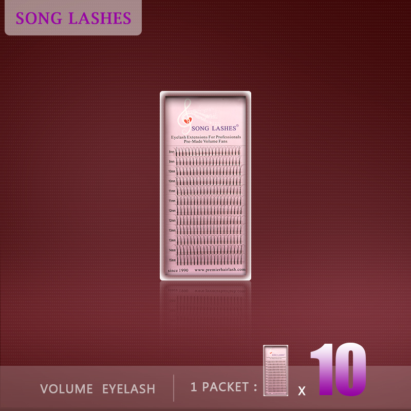 SONG LASHES 0.07 0.10mm thickness High Quality Pre-fanned 2D 3D 4D 5D Volume Lashes Eyelash Extension Ten trays per pack