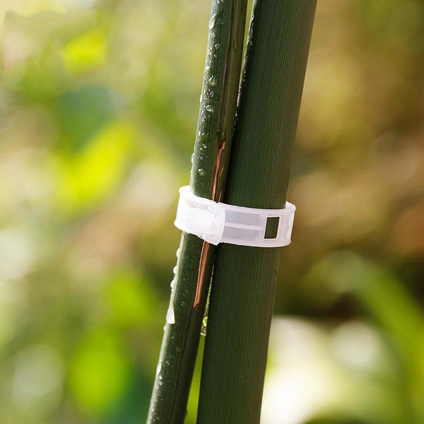 10 vnt / rinkinys Naujas kokybiškas patvarus plastikinis augalų - Sodo įrankiai - Nuotrauka 3