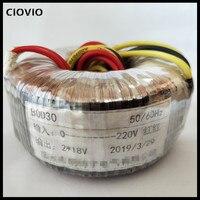 50W Toroidal Power Transformer 220V to 12V Single Phase Isolated AC Ring Transformer For Power Supply Amplifier