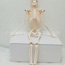 45 см мини Анатомия человека медицинская модель скелета стандарт для изобразительного искусства и медицины стенд плакат медицинский обучения помощи биологии