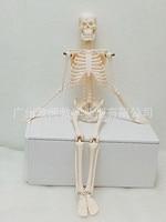 45CM Mini model szkieletu anatomii człowieka Standard medyczny dla sztuk pięknych i stojak medyczny plakat medycyna dowiedz się biologia pomocy w Nauki medyczne od Artykuły biurowe i szkolne na