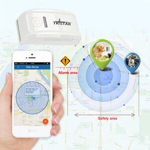 Image 3 - מותג TKSTAR LK909 TK909 הגלובלי Locator לחיות מחמד בזמן אמת GPS Tracker עבור חיות מחמד כלב/חתול GPS צווארון מעקב משלוח פלטפורמת חינם