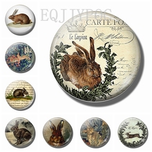 Easter Bunny 30MM Fridge Magnets Glass Dome Magnetic Stickers for Refrigerator Magnet Rabbit Note Holder Cute Animals Home Decor painting the bird 30mm fridge magnet cute animals refrigerator magnet glass dome magnetic stickers creative home decor
