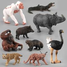Imitacja zwierzęcia zabawki dla dzieci zabawki dla dzieci prezent Lynx Orangutan krokodyl strusie dzika Model zabawki figurki akcji figurki lalki tanie tanio JIMITU CN (pochodzenie) Unisex 8 cm 10 cm No Eat 10*7 5cm Remastered version 6 lat Dorośli 14 lat 12-15 lat 5-7 lat
