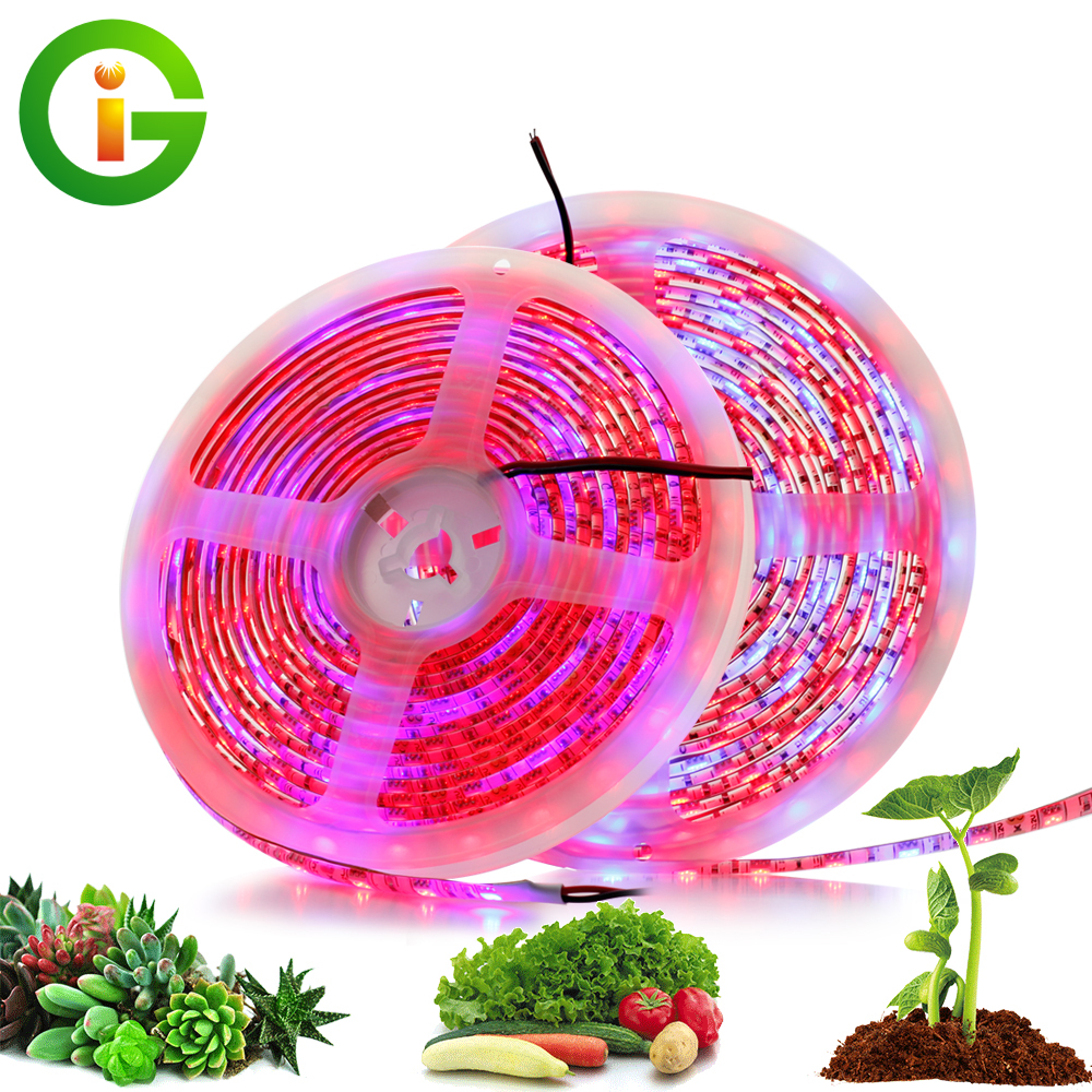 Plant Grow Lights 5M/Lot Waterproof Full Spectrum LED Strip Light 300 LEDs 5050 Chip Flower Phyto Lamp For Greenhouse Hydroponic