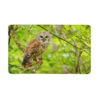 Barred Owl Sitting on Tree Indoor Doormat Non Slip Front Entrance Door Mat Rug Rug Cartoon Kitchen Mat Hall Mat Printed Rug
