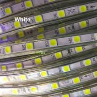 100M SMD5050 AC220V LED Strip 60LEDs/M Waterproof ip67 With EU Plug adapter Red/Green/Blue/Warm White/White Light