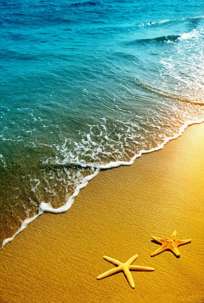 SHENGYONGBAO Beach Theme Vinyl Photography Backdrops