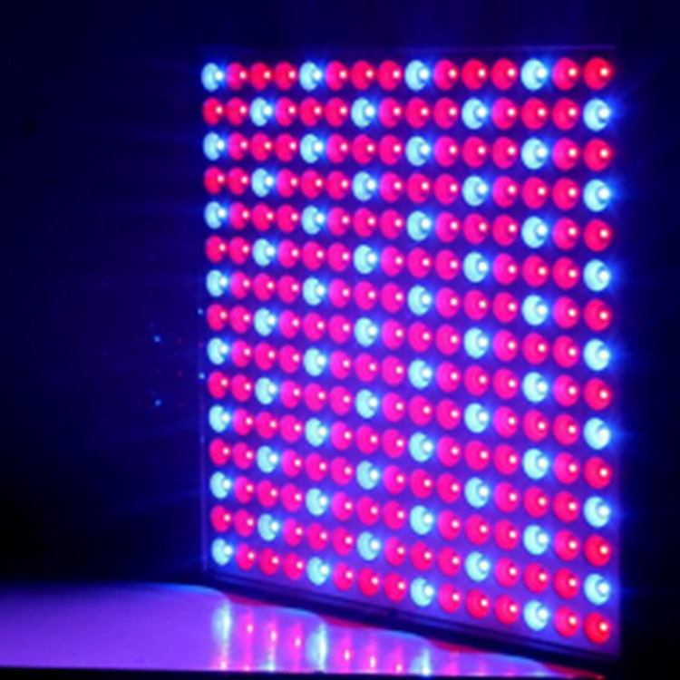 2016 New LED Grow Panel 165W Led Grow Light 1131Red 234Blue Led Plant Lamp for Flowers Grow Box Tent Greenhouse Grows Lighting hot sale 12w led plant grow lamp high bright appliable for indoor planting grow box grow tent lighting long lifespan