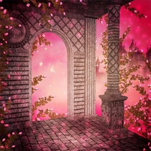 цена на Laeacco Arch Door Pink Flowers Light Bokeh Baby Party Photography Backgrounds Customized Photographic Backdrops For Photo Studio