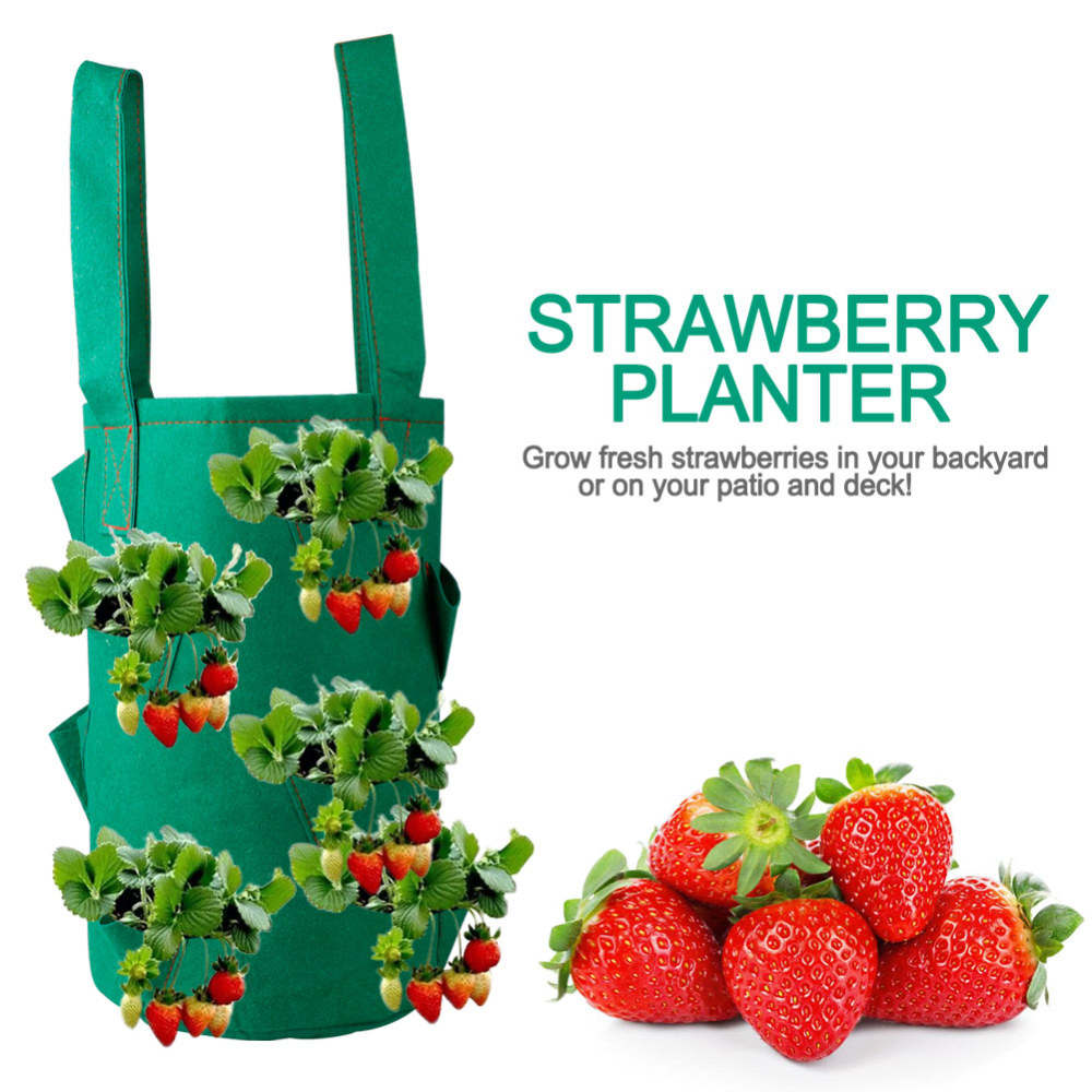 38*22cm 11 Holes Strawberry Planting Grow Bags Pocket Home Garden Hanging Herb Plant Bags