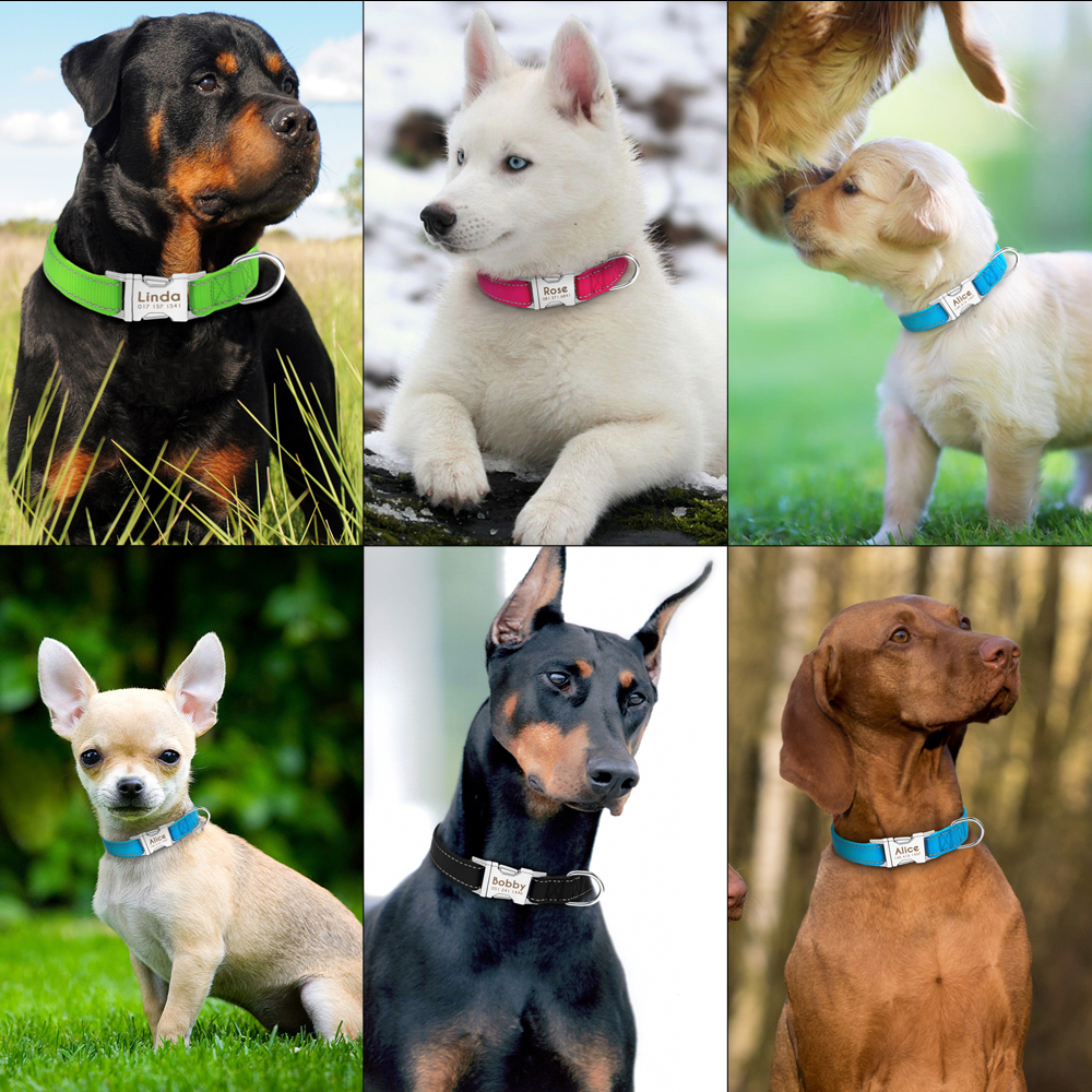 Personalized Dog Collar Durable Nylon Reflective Collar Custom Pet Dogs Collars For Small Medium Large Dogs 1
