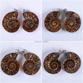 Ancient Pairs of Metal Wrapped Natural Ammonite Fossil Stone Opened Pendant Beads Bulk Wholesale