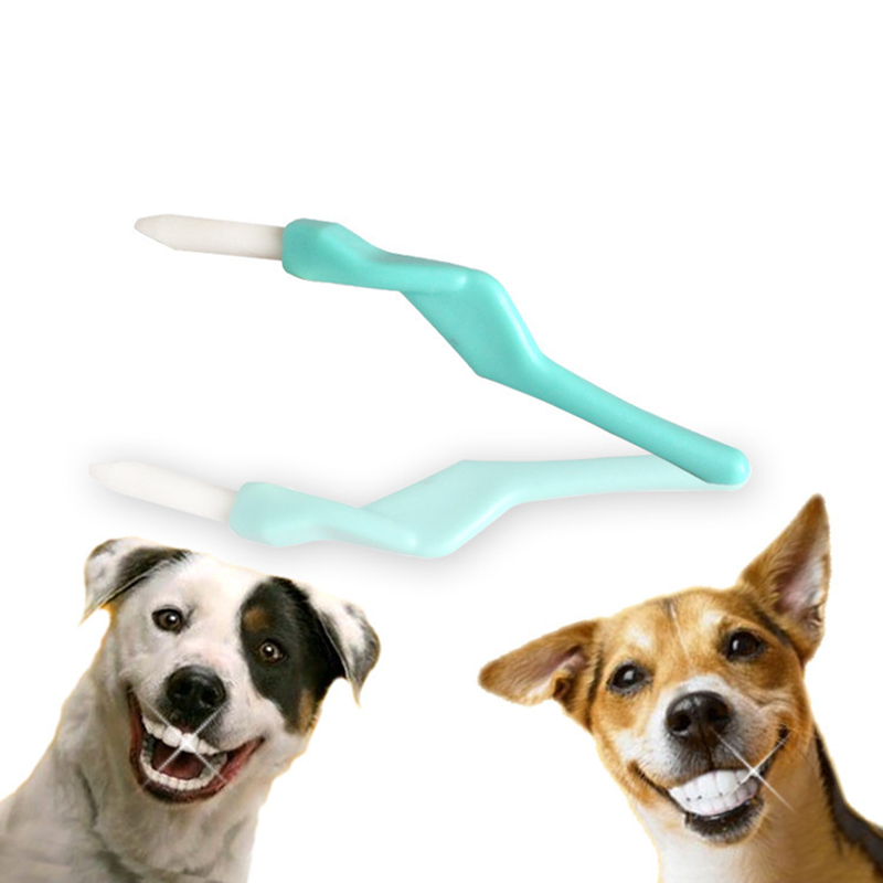 New Dog Toothbrush Set Pet Tooth Cleaner Toys 1 Tooth Brush Plus 2 Finger Brushes Toy Suitable for Dogs Cats Chinchilla Guinea in Dog Toys from Home Garden