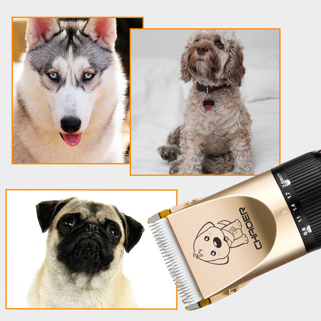 Dog cat hair  Electrical  Grooming Tool