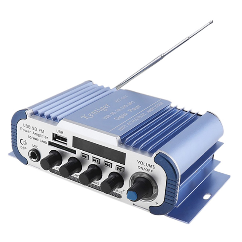 Amplificador Karaoke Profissional Para O Carro EU Plugue azul