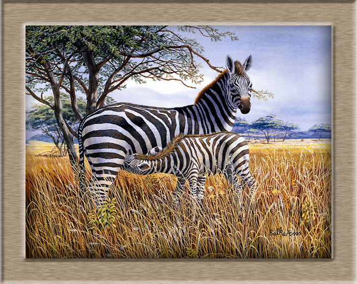③Don Balke cebra y potro HD pintura al óleo pintura de pared arte