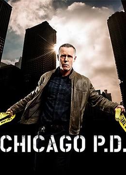 《芝加哥警署 第五季》2017年美国剧情,动作电视剧在线观看