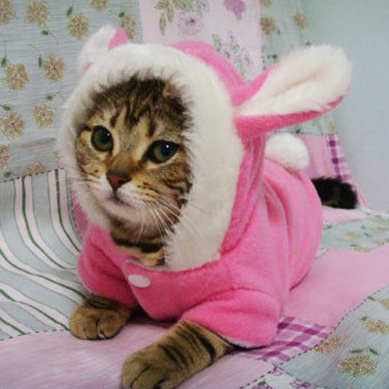 Pet Cat Clothes Mascotas Costume Clothes For Pet Hoodies Cute Rabbit Cat Kitten Clothing Puppy Fleece Warm Pet Cat Jacket Outfit