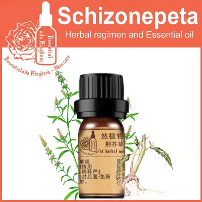 100% pure plant Herbal medicine oil schigonepeta herbal oil 5ml Essential  oil traditional Chinese Fineleaf Schizonepeta Herb -in Essential Oil from