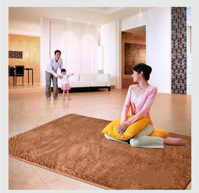 Shag Area Rugs For Home Brown Carpet Water Washable Livingroom Rug