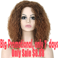 Afro Kinky Curly Wig Synthetic Wigs For Black Women Heat Resistant Synthetic Wigs Natural Cheap Hair