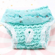 Lace Dog Sanitary Pant Dog Diapers Pet Supplies Chiffon Princess Puppy Safety Shorts Dog Menstrual Panties