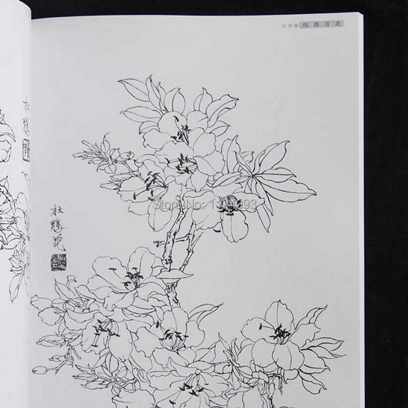 Bunga Cina Gongbi Garis Menggambar Sketsa Lukisan Cina Buku Untuk