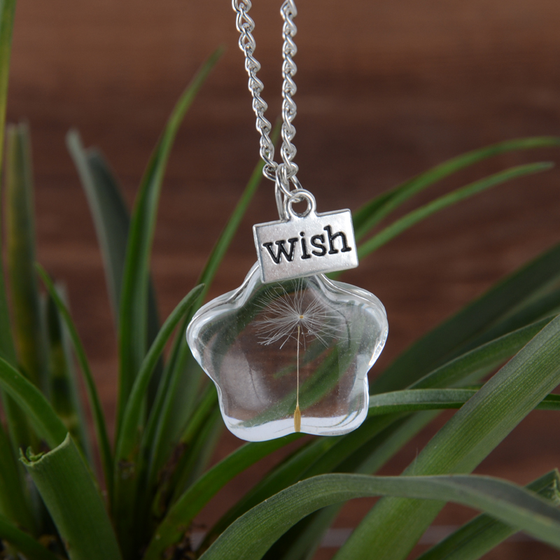 Stunning Star Vial Necklaces