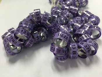 8mm Hihh quality 200pcs shipping free rings  for racing pigeon