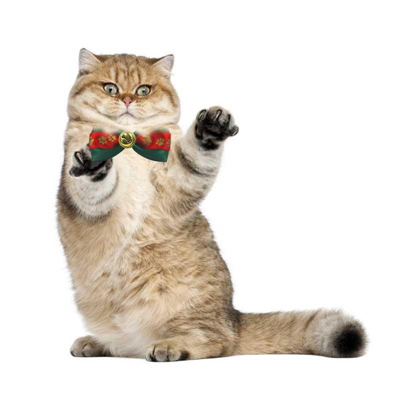 Kołnierz boże narodzenie zwierzęta kot pies Neck szczeniak oporządzanie konia Xmas niezbędne muszka party boże narodzenie ozdoba festiwal dostaw