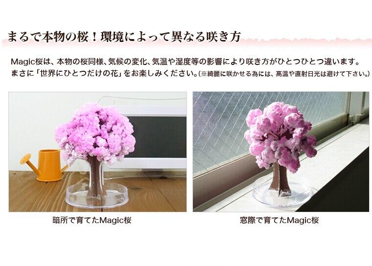 2017 14x11 cm Rosa Grande Crecer Magia de Papel de Sakura Árbol - Nuevos juguetes y juegos - foto 6