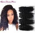De cabelo encaracolado 4 pcs lot peruano virgem peruano kinky curly cabelo weave extensões de cabelo humano preto natural de alta qualidade