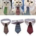 Preparação do cão Gato Listrado Collar Bow Tie Pet Gravata Ajustável Cão Colarinho Branco Gravata Festa de Casamento Gravata Cachorro