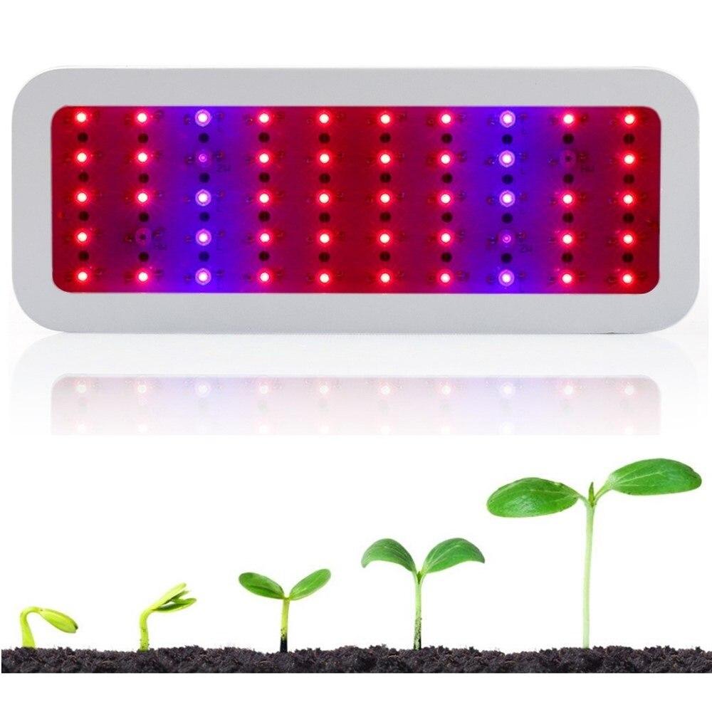 300 W Led élèvent la lampe de croissance de plante de Led à spectre complet légère 380-730nm pour la tente d'intérieur de floraison de plante de serre chaude